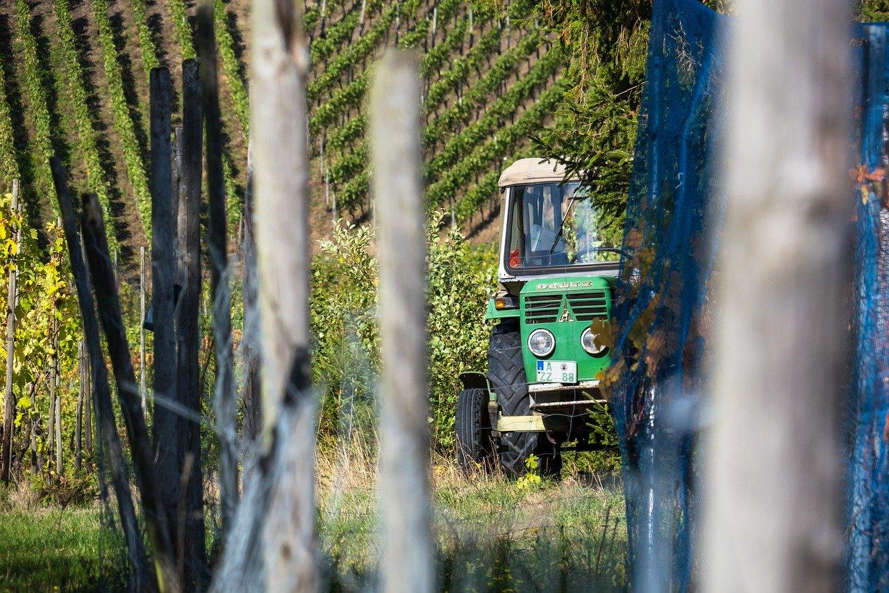 Il Private Equity aiuta a sostenere l'economia Italiana